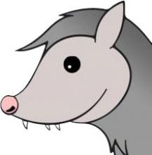Ray D. Opossum's picture